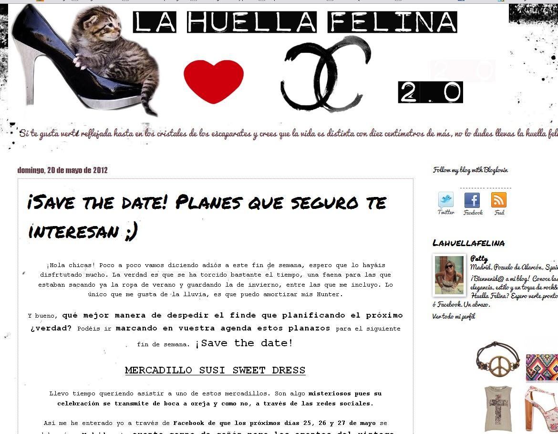 Blog La Huella Felina